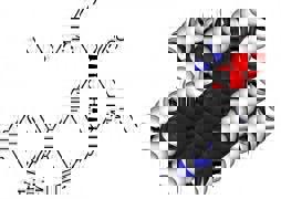 20111116-112615.jpg